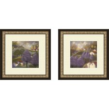 Serentiy 2 Piece Framed Painting Print Set