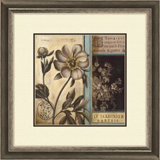 Belle Fleur B Framed Graphic Art