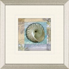 Restful Shell B Framed Graphic Art