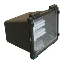 2 Light Outdoor Floodlight