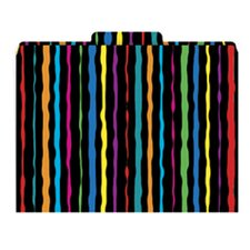Neon Stripes Functional File Folder
