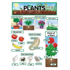 Plants Mini Bb Set