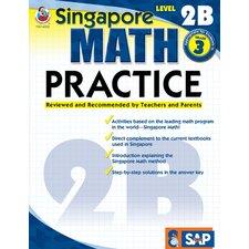 Math Practice Level 2b Gr 3