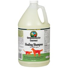 Healing Shampoo for Dogs and Cats