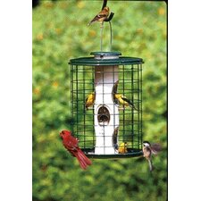 Avian Series Caged Bird Feeder in Green