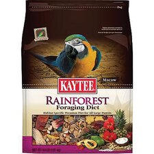 Rainforest Foraging Diet Macaw Food