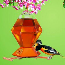 Hexagon Oriole Bird Feeder