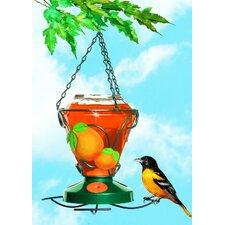 Deluxe Hand Painted Oriole Bird Feeder