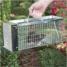 X-Small 1-Door Live Animal Trap