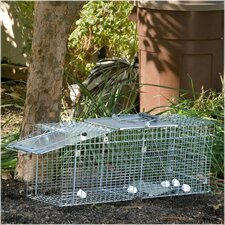 Large Collapsible Easy Set Live Animal Trap