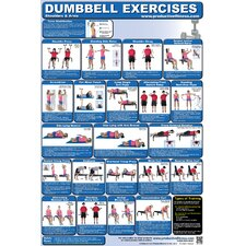 <strong>Productive Fitness Publishing</strong> Dumbbell Poster - Upper Body