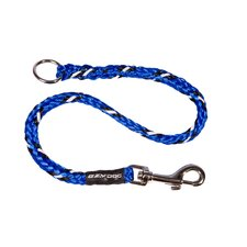 Standard Extension Dog Leash in Blue