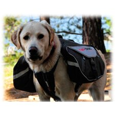 Summit Dog Backpack in Back/Charcoal