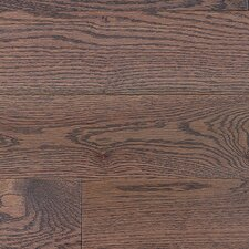 "Stained Semi-Gloss 4-1/4"" Solid Red Oak Flooring in Charcoal Light/Folk"