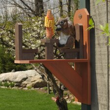 Craft Squirrel Corn Windown Bird Feeder