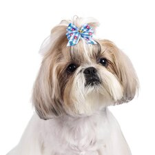 Becky Dog Bows (Pack of 100)