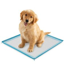 Silicone Puppy Pad Holder