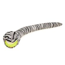 Striped Tennis Ball Crawler Dog Toy