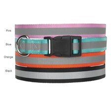 Reflective Dog Collar in Orange