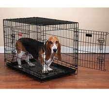 Everlasting Folding Pet Crate