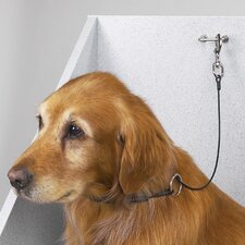 Dog Cable Choker Restraint