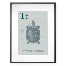 Turtle Framed Graphic Art
