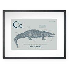 Crocodile Framed Graphic Art