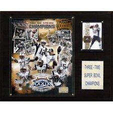 NFL Champions Plaque
