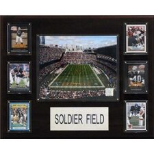"<strong>C & I Collectibles</strong> NFL 16"" x 20"" Stadium Plaque"