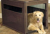 Top 10 Dog Crates and Kennels