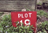 How To Make Your Allotment