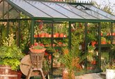 Buying a Greenhouse