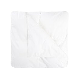 All Season Weight Down Filled Duvet Insert