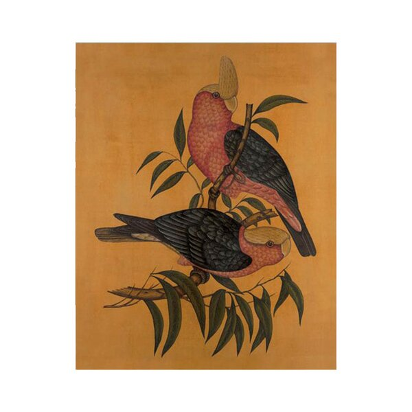 DwellStudio Vintage Aviary Artwork I